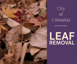 Leaf Removal Newsflash